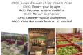 2019-09-Journees-vendanges-Chp-Vollereaux-2