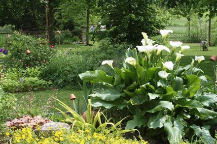 rendez-vous-jardin-parc-fleuri