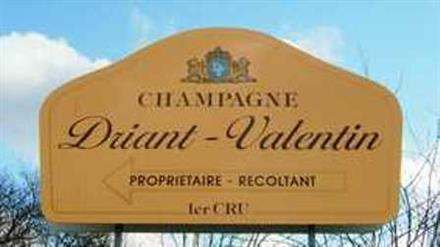 Champagne Driant Valentin - Grauves