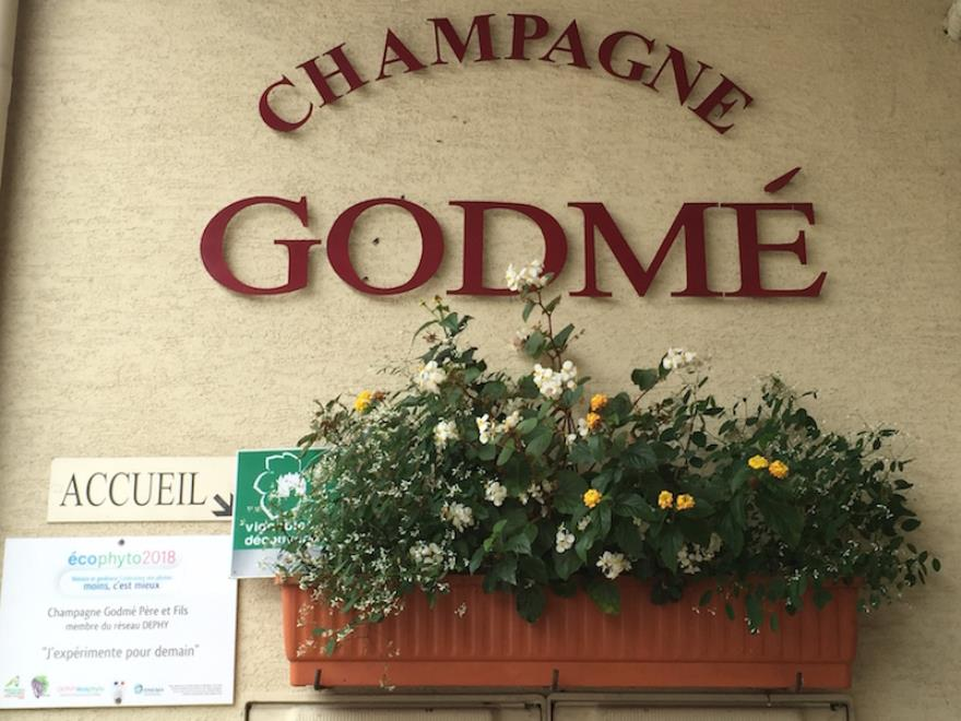 Champagne Hugues Godmé - Verzenay
