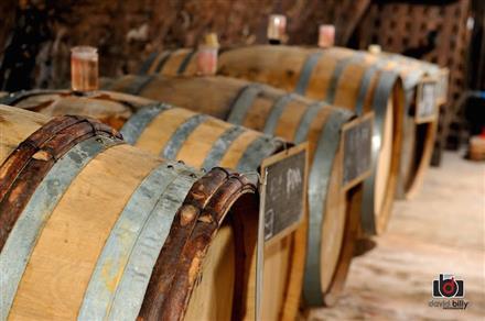Champagne Le Brun - Monthelon