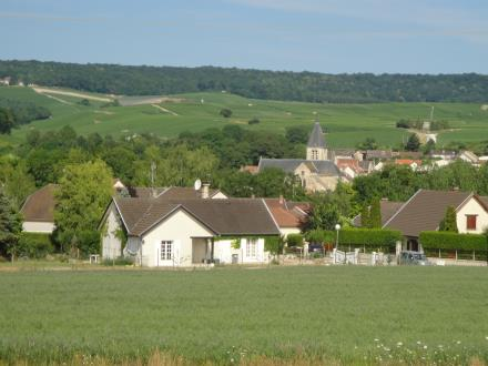 Les Longues Royes - Avenay Val d'Or (4)