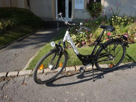 Location de VTC, VTT et vélos électriques - Epernay (3)