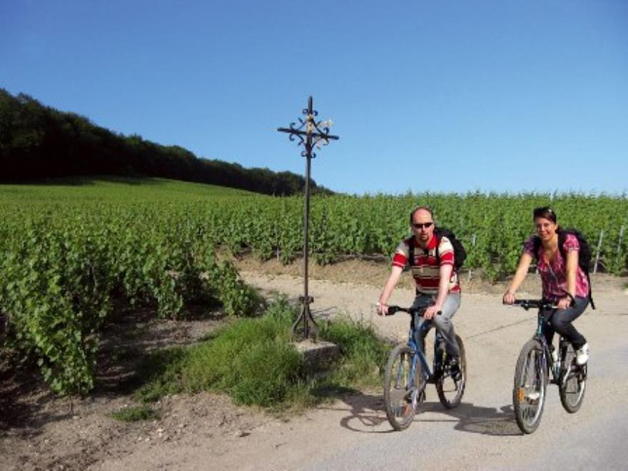 Location de vélo à Mancy-Champagne Domi Moreau