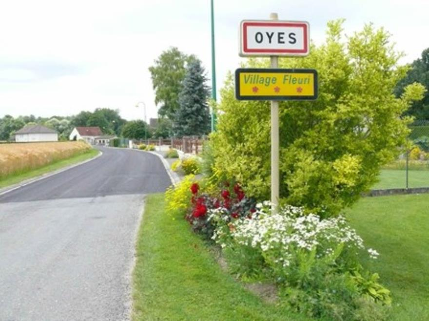 Oyes (2)