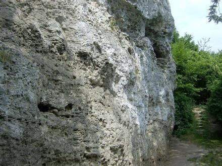 Site des Falloises Escalade - Vertus (2)