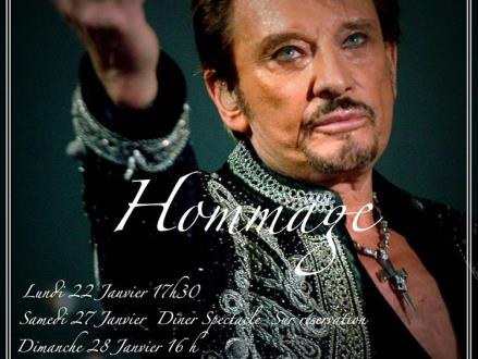 hommage Johnny (2)