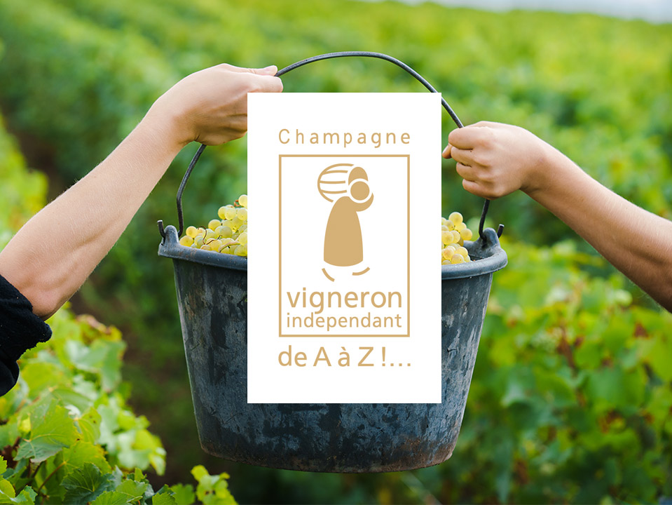 vigneron-inde-fond-photo-11