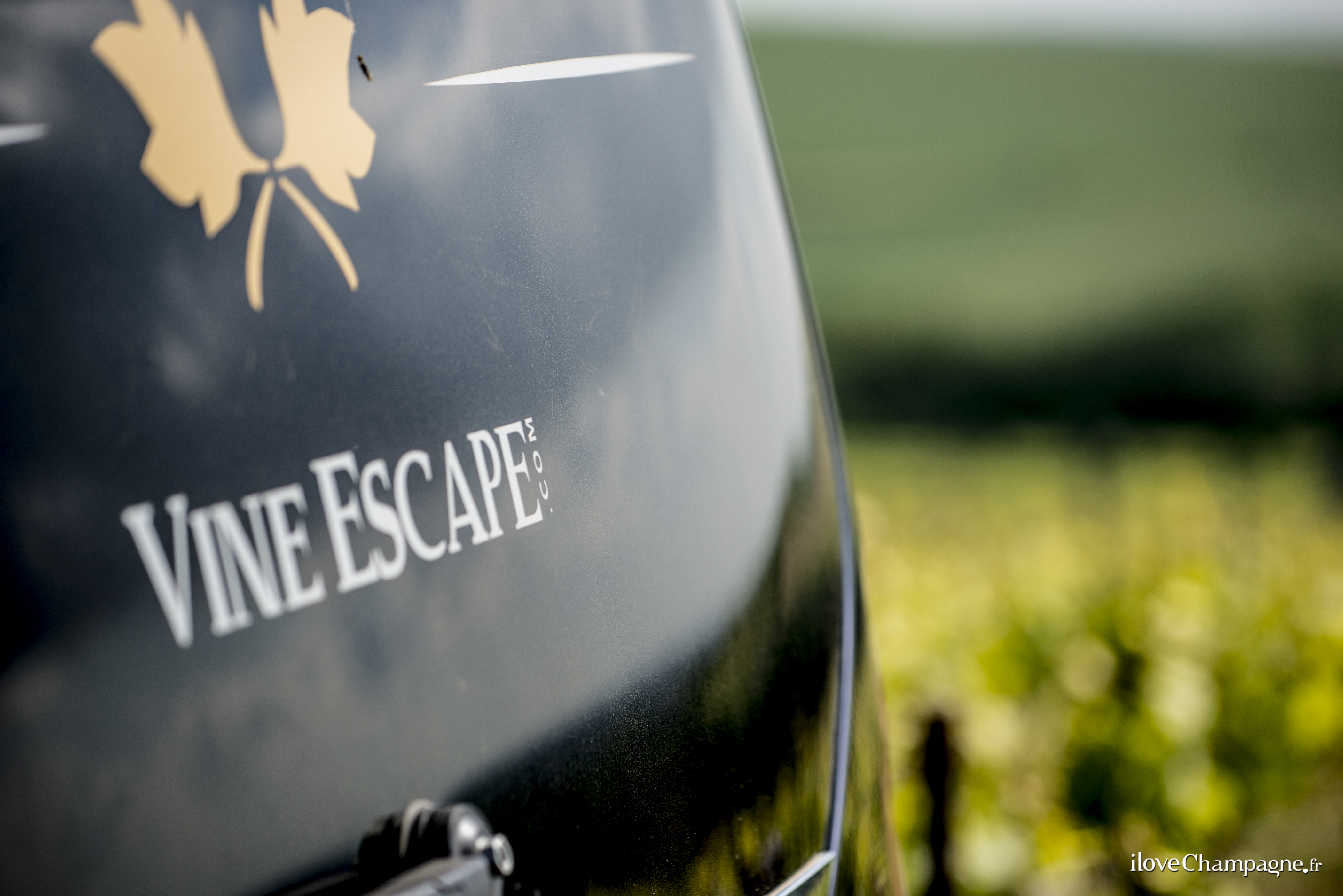 wine tourism in champagne Champagne tours in the champagne region of france market leading tours with consistently great customer feedback and a lowest price guarantee.