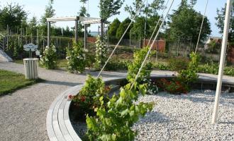 Le Jardin des Vignes - Chouilly