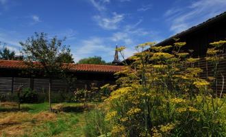 Les Jardins Pédagogiques du Musée du Pays du Der - Sainte-Marie-du-Lac-Nuisement